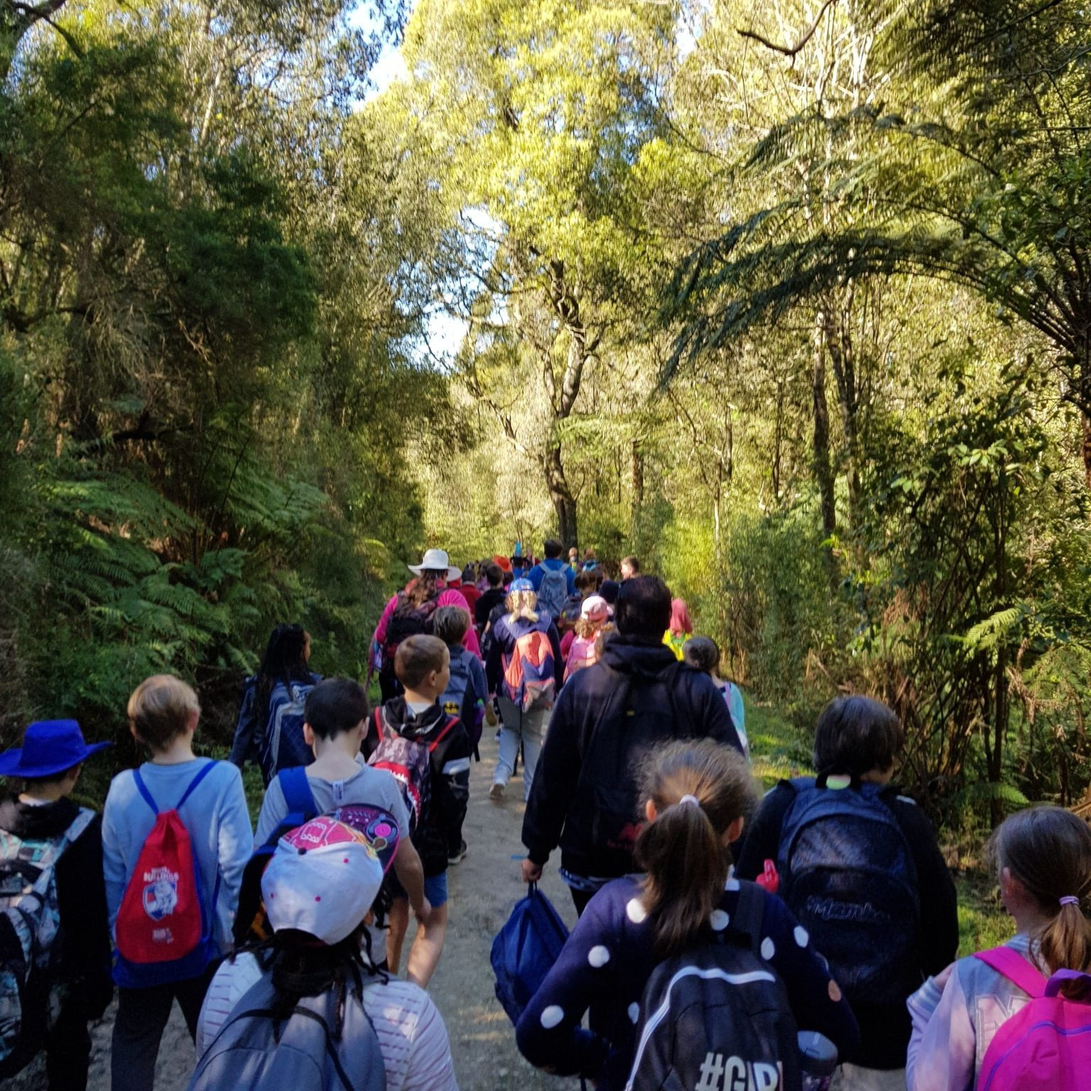 Wonthaggi North Primary School Students On Camp 1